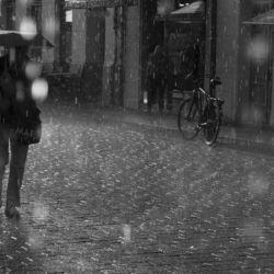 Potsdam in the rain