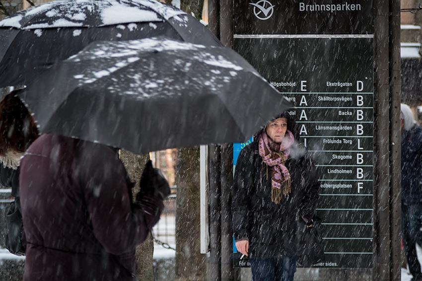 Brunnsparken smoker - Street Photography
